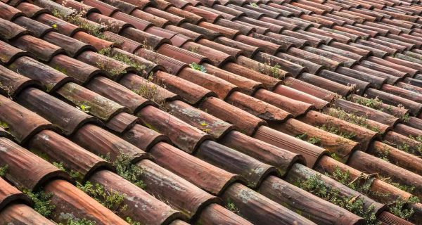 When To Replace Roof Shingles?